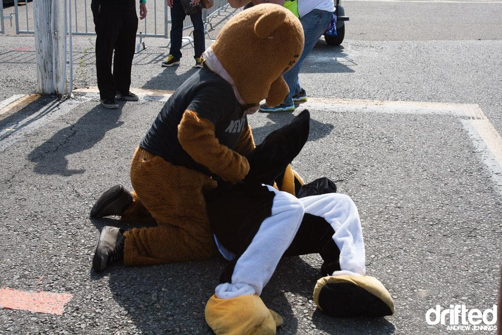 Bear vs. Penguin Mascot Fight