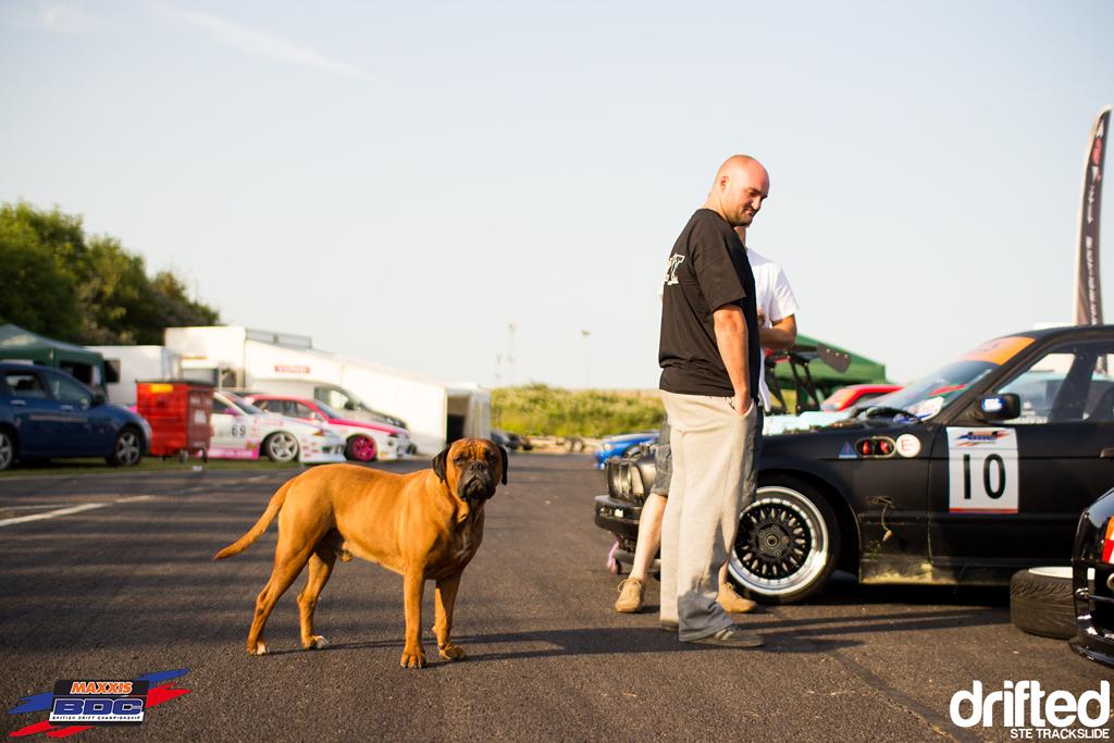 Ste Trackslide BDC Team Event 2013 Meathead dog 4